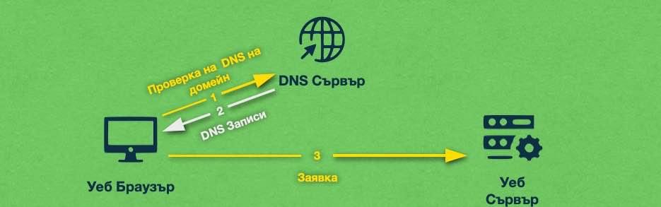 DNS записите са като пътни знаци, които пренасочват трафика от даден домейн към сървъра, който го обслужва.
